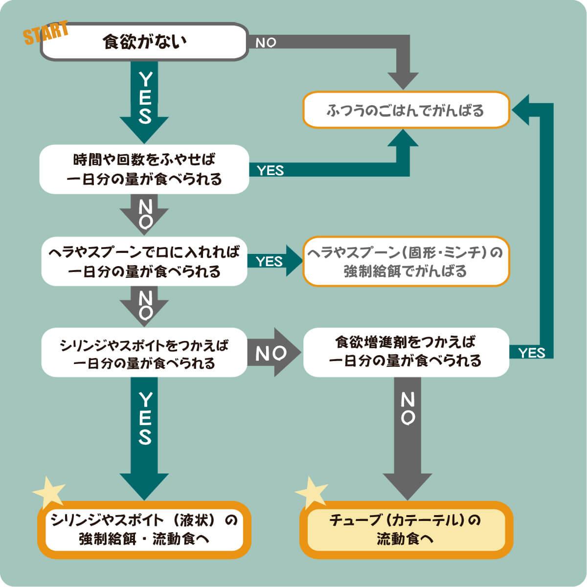 流動食YES-Noチャート